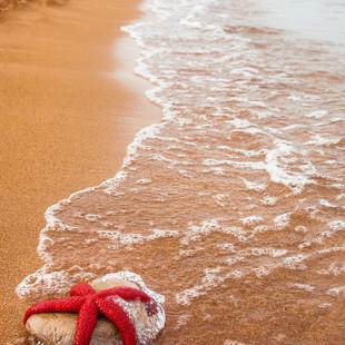 Estic esgotada... Necessito anar a la platja i estirar-me!